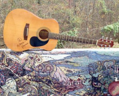 Warren Haynes_guitar